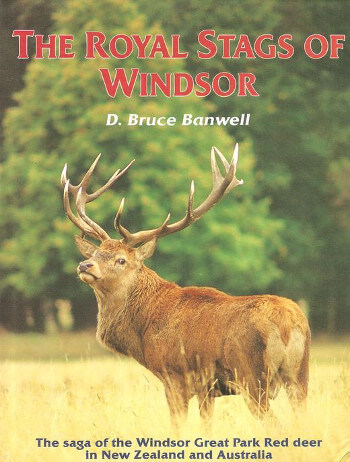 royal stags of windsor book