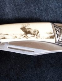 stag pocket knife